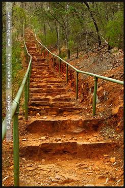 Ущелье Аллигатора, Alligator Gorge, Маунт Ремаркабл, Mt Remarkable, Южная Australia, South Australia, Австралия, Australia