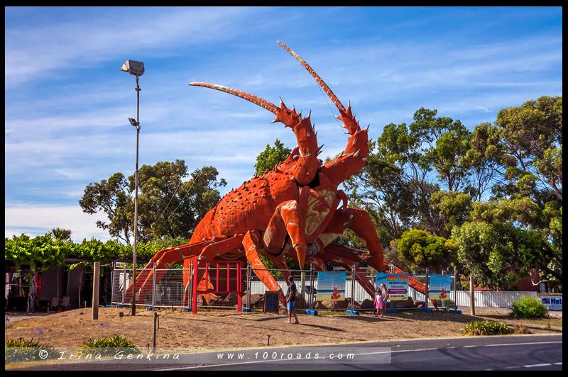 Река Мюррей, Murray River, Южная Австралия, South Australia, Австралия, Australia
