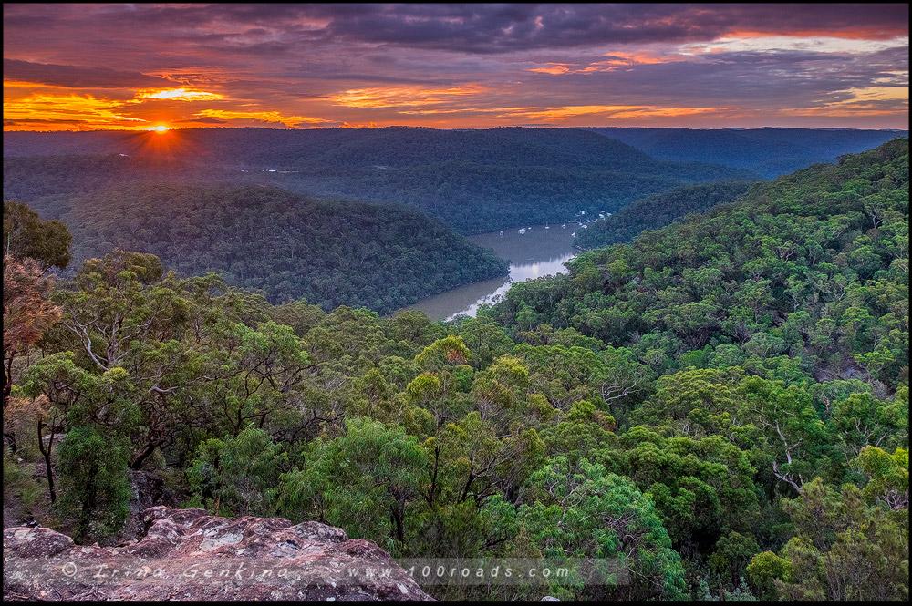 Berowra Valley, NSW, Сидней, Sydney, Австралия, Australia