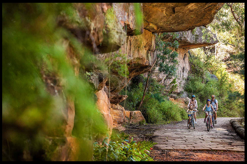 Lady Carrington Drive, Royal National Park, Сидней, Sydney, Австралия, Australia