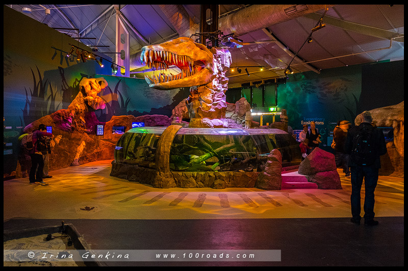 Сиднейский аквариум, Sydney Aquarium, Дарлинг Харбор, Darling Harbour, Сидней, Sydney, Австралия, Australia