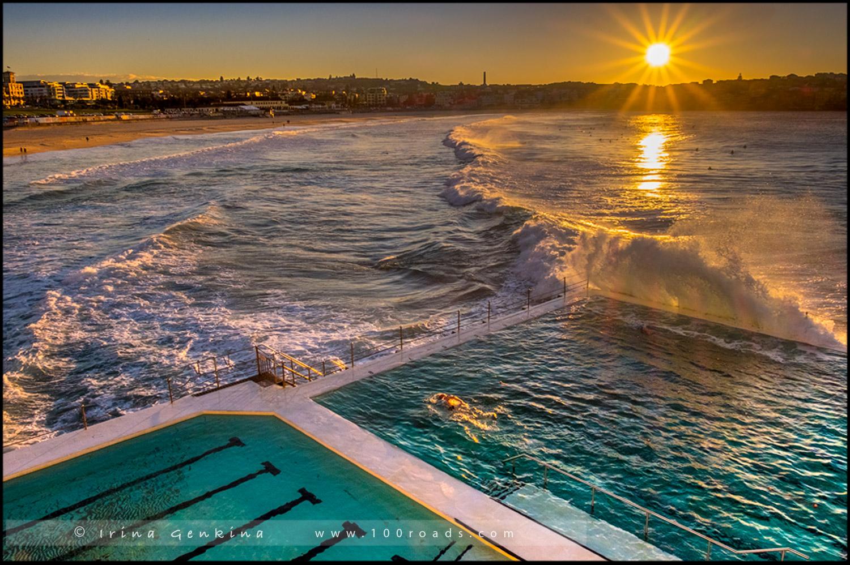 Бассейна Айсберг, Bondi Icebergs, Пляж Бондай, Bondi Beach, Сидней, Sydney, Австралия, Australia