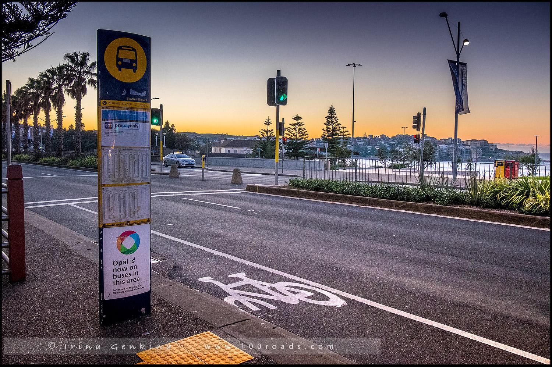 Пляж Бондай, Bondi Beach, Восточные пляжи, East Beaches, Сидней, Sydney, Новый Южный Уэльс, New South Wales, Австралия, Australia