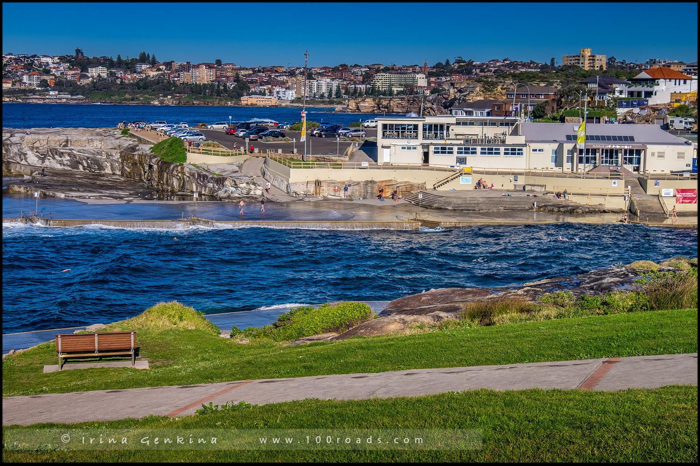 Пляж Кловелли, Clovelly Beach, Бондай - Куджи, Bondi to Coogee, Восточные пляжи, East Beaches, Сидней, Sydney, Новый Южный Уэльс, New South Wales, Австралия, Australia
