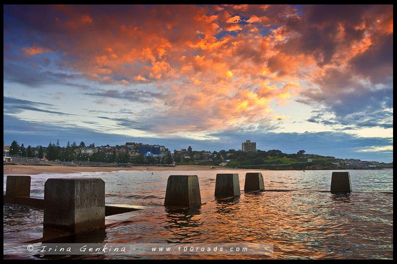 Пляж Куджи, Coogee Beach, Восточные пляжи, East Beaches, Сидней, Sydney, Новый Южный Уэльс, New South Wales, Австралия, Australia