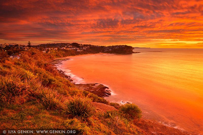 Bungan Beach, Северные пляжи, Northen Beaches, Сидней, Sydney, Новый Южный Уэльс, New South Wales, Австралия, Australia