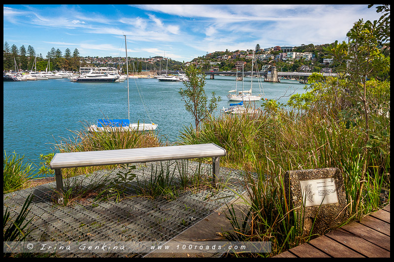 От Спит Бридж до Мэнли, Spit Bridge to Manly, Manly Scenic Walkway, MSW, Сидней, Sydney, Австралия, Australia