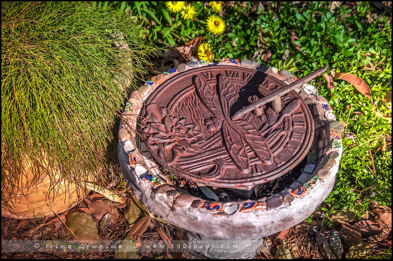 Сад Хоге, Hogue garden, Сазерленд, Sutherland, Сидней, Sydney, Новый Южный Уэльс, New South Wales, Австралия, Australia