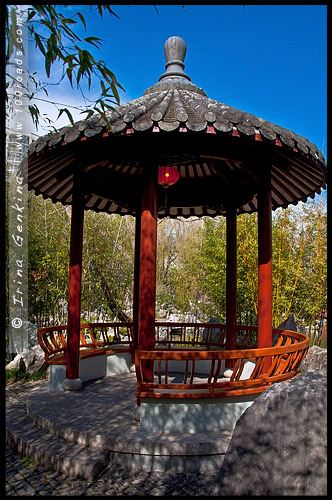 Китайский Сад Дружбы, Chinese Garden of Friendship, Сидней, Sydney, Новый Южный Уэльс, NSW, Австралия, Australia