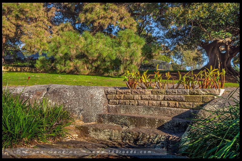 Королевские ботанические сады Сиднея, The Royal Botanic Garden Sydney, Сидней, Sydney, Австралия, Australia
