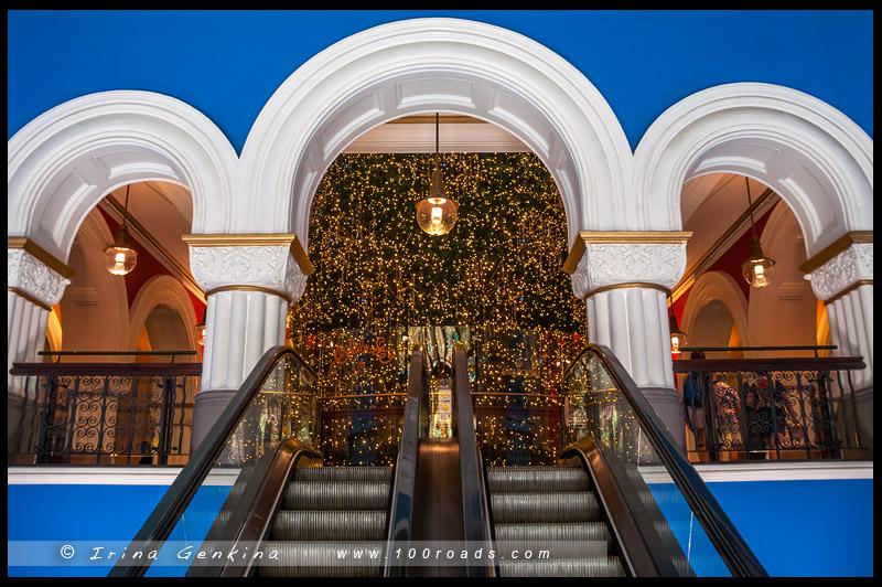 Рождественская елка, Здание Королевы Виктории, Queen Victoria Building, Сидней, Sydney, Австралия, Australia