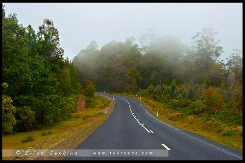 Озерное шоссе, Lake Highway, Дорога A5, Тасмания, Tasmania, Австралия, Australia