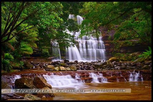 Водопад Лиффи, Liffey Falls, Тасмания, Tasmania, Австралия, Australia