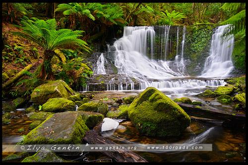 Водопад Подкова, Horseshoe Falls, Тасмания, Tasmania, Австралия, Australia