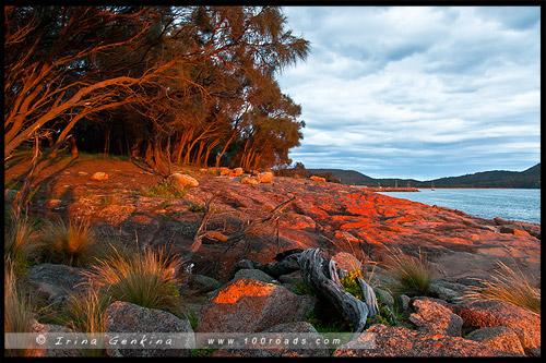 Закат, Залив Колс, Coles Bay, Тасмания, Tasmania, Австралия, Australia
