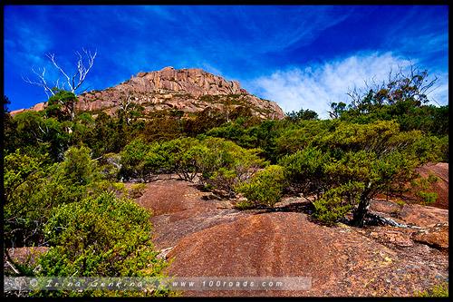 Полуостров Фрейсине, Freycinet Peninsula, Тасмания, Tasmania, Австралия, Australia