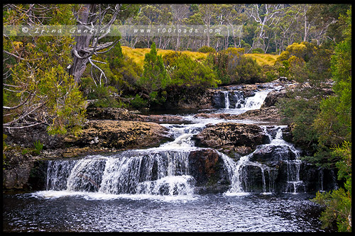 Водопад, Pencil Pine Falls, Крэдл Маунтен, Cradle Mountain, Тасмания, Tasmania, Австралия, Australia