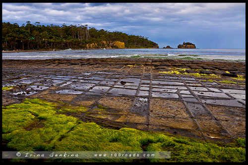 Мозаичный тротуар, Tessellated Pavement, Тасмания, Tasmania, Австралия, Australia