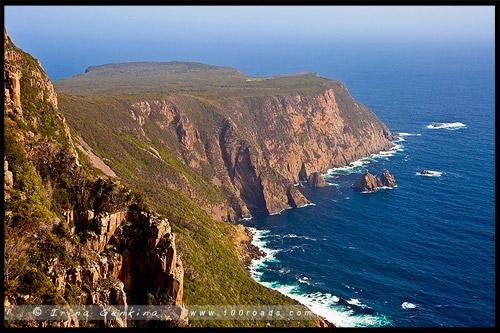 Мыс Рауль, Cape Raoul, Тасмания, Tasmania, Австралия, Australia