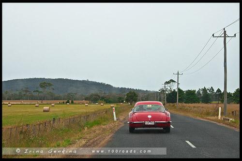 Шоссе Тасман, Tasman HWY, Тасмания, Tasmania, Австралия, Australia