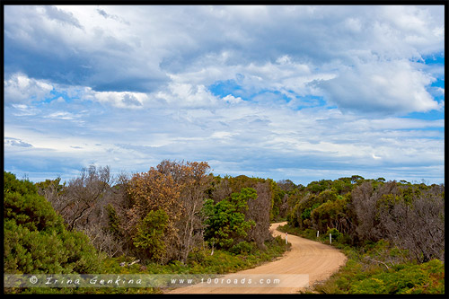 Дорога Эддистоун Роинт, Eddystone Point Rd, Тасмания, Tasmania, Австралия, Australia
