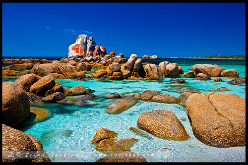 Picnic Rocks, Пикник Рокс, Скалы приятного времяпрепровождения, Eddystone Point, Пикник Рокс, Тасмания, Tasmania, Австралия, Australia