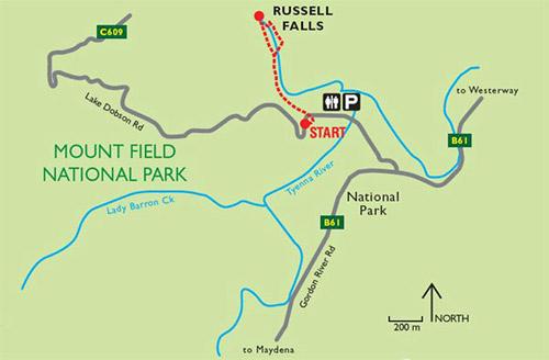 Водопад Расселл, Russell Falls, Тасмания, Tasmania, Австралия, Australia