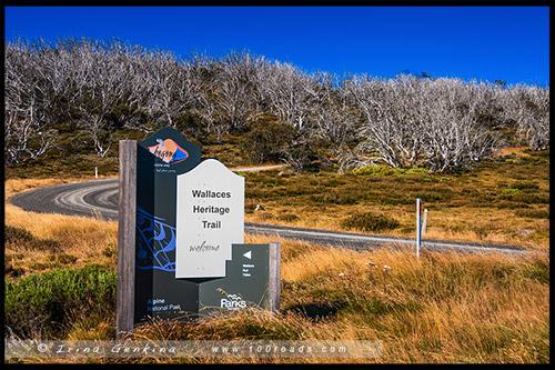 Историческая тропа Уоллесов, Wallaces Heritage Trail, Высокогорье Богонг, Bogong High Plains, Фолс Крик, Falls Creek, Викторианские Альпы, Victorian Alps, Австралия, Australia