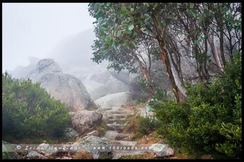 Парк Горы Баффало, Mount Buffalo, Викторианские Альпы, Victorian Alps, Виктория, Victoria, Австралия, Australia