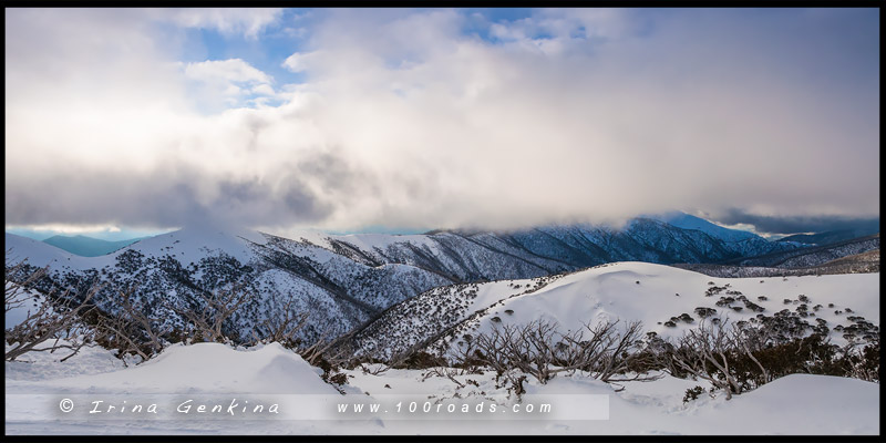 Гора Хотам, Mount Hotham, Викторианские Альпы, Victorian Alps, Австралия, Australia