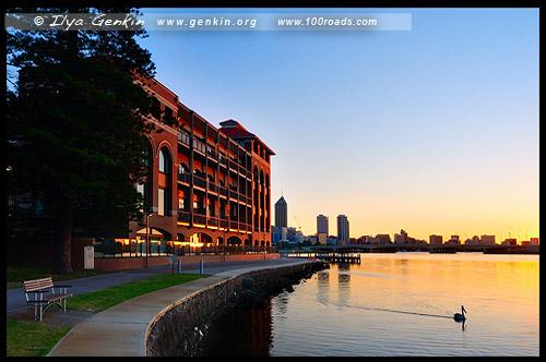Пивоварня старого лебедя, The Old Swan Brewery, Перт, Perth, Западная Австралия, Western Australia, WA, Австралия, Australia