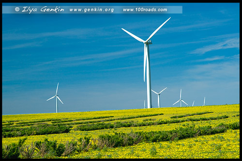 Ветровая электростанця, Emu Downs Wind Farm, Сервантес, Cervantes, Западная Австралия, Western Australia, WA, Австралия, Australia