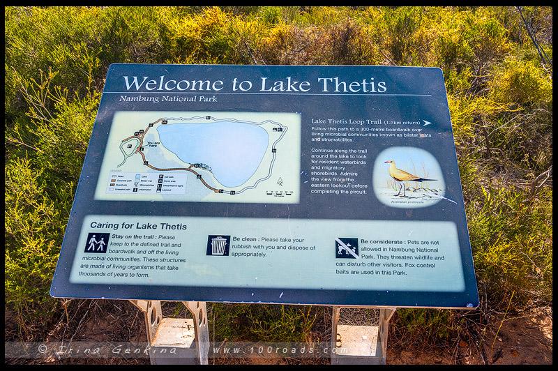 Озеро Тетис, Lake Thetis, Сервантес, Cervantes, Западная Австралия, Western Australia, Австралия, Australia