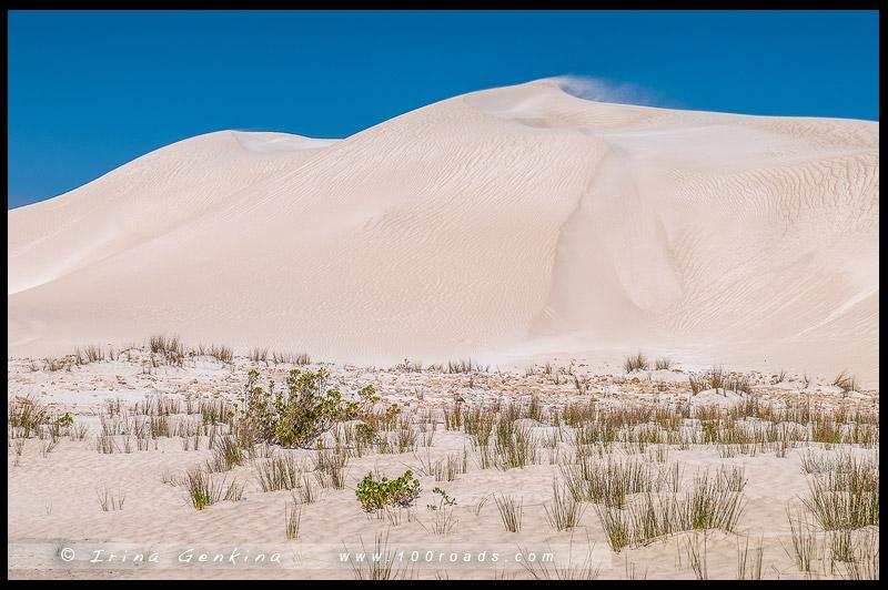 Дюны Ланселин, Lancelin Dune, Западная Австралия, Western Australia, Австралия, Australia