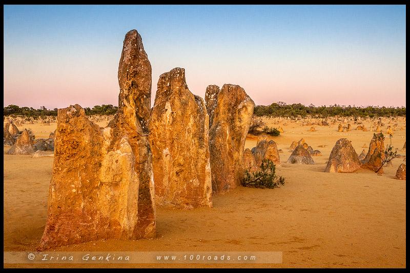 Пустыня Пиннаклс, Pinnacles Desert, Парк Намбунг, Nambung NP, Западная Австралия, Western Australia, Австралия, Australia