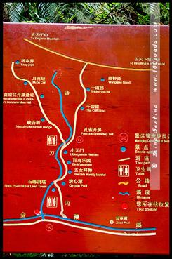 Поток Золотого Хлыста, Golden Whip stream, 金鞭鱼, Чжанцзяцзе, Жангжиажие, Zhangjiajie, 张家界, Улиньюань, Wulingyuan, 武陵源, Китай, China, 中國, 中国
