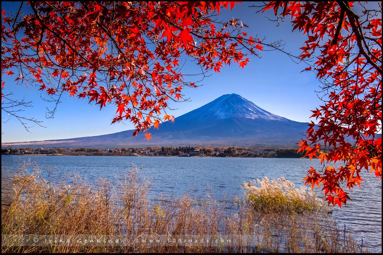 Гора Фудзи, Фуджи, 富士山, Кавагучико, Kawaguchiko, Хонсю, Honshu Island, 本州, Япония, Japan, 日本