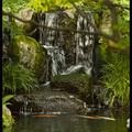 Якобы горные потоки в Саду господина Оясики, Сад Кокоен, Koko-en Garden, Химедзи (Himeji), Ярония, Hyogo Prefecture, Kansai Region, Honshu Island, Japan