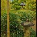Вид на беседку Бамбуковом саду, Take-no-niwa, Koko-en Garden, Hyogo Prefecture, Kansai region, Honshu Island, Japan