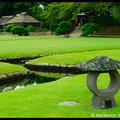 Korakuen Garden, Okayama, Honshu, Japan