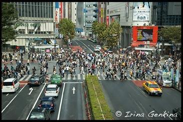 Крупнейший и самый оживленный перекресток города в районе Сибуя, Shibuya, The Busiest Intersection in the World, Shibuya, Tokyo, Kanto Region, Honshu Island, Japan