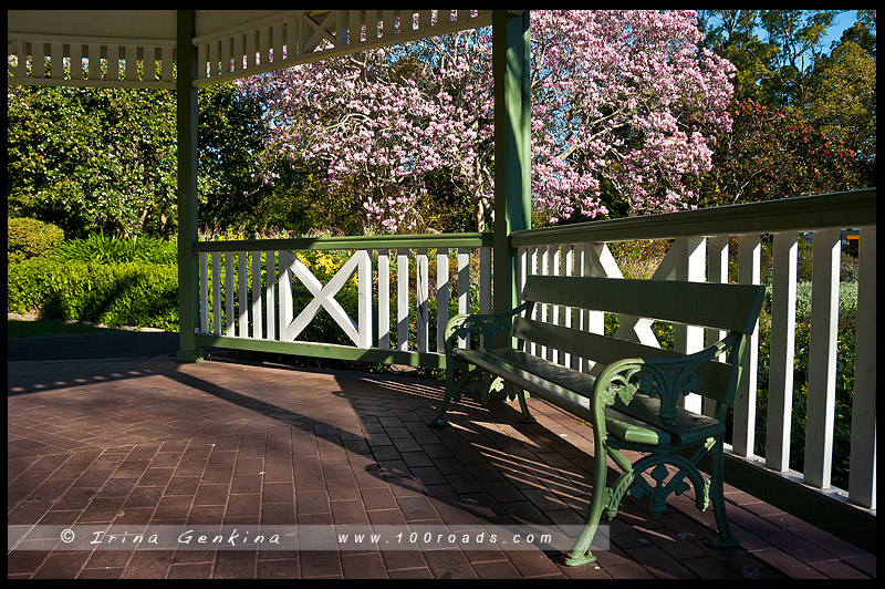 Варунга парк, Wahroonga Park, Варунга, Wahroonga, Сидней, Sydney, Австралия, Australia