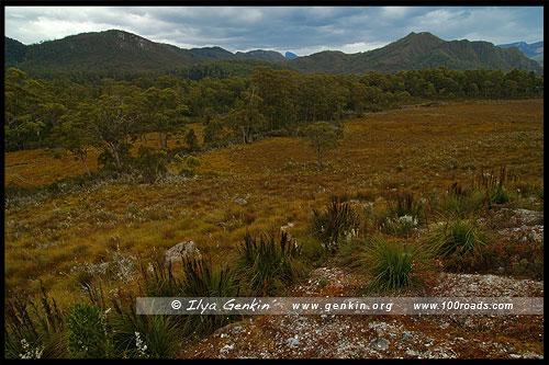 Тасманийская Шотландия, Tasmanian Highlands, Тасмания, Tasmania, Австралия, Australia