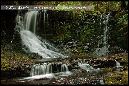 Водопад Подкова, Horseshoe Falls, Парк Маунт-Филд, Mt Field NP, Тасмания, Tasmania, Австралия, Australia