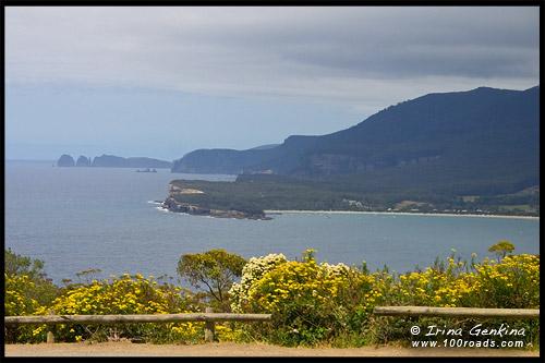 Панорамный вид с дороги Залив Пиратов (Pirates Bay road), Полуостров Лесничий, Forestier Peninsula, Тасмания, Tasmania, Австралия, Australia