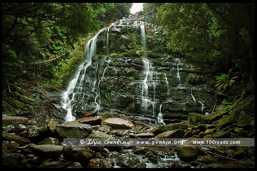 Водопад Нельсон (Nelson Falls), Тасмания, Tasmania, Австралия, Australia