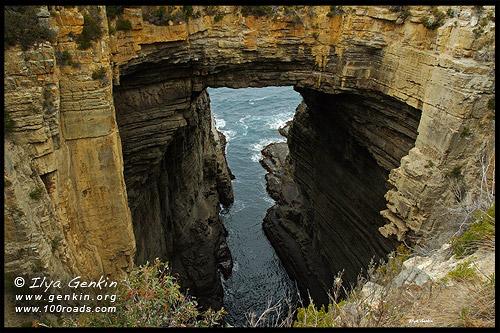 Tasman Arch,  Полуостров Тасман, Tasman Peninsula, Тасмания, Tasmania, Австралия, Australia