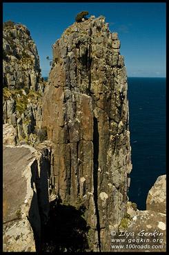 Дорогой на Мыс Хауй, Way to Cape Hauy, Полуостров Тасман, Tasman Peninsula, Тасмания, Tasmania, Австралия, Australia