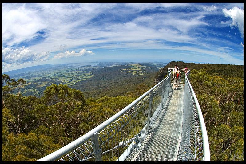 Топ-10 Австралия, Top-10 Australia, Illawarra Fly, Новый Южный Уэльс, New South Wales, Австралия, Australia