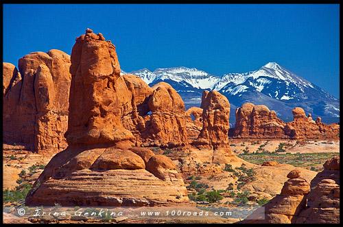 Райский сад, Garden of Eden, Национальный парк Арки, Arches National Park, Юта, Utah, США, USA, Америка, America